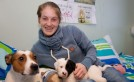 Dunedin Canmore hostel welcomes newest residents: 10 newborn puppies! image