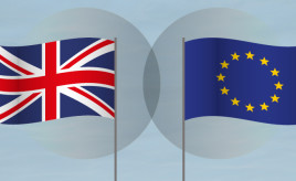 SFHA Brexit Briefing - February 2019 image