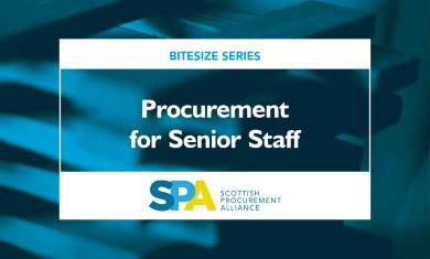 Procurement what senior staff should know image