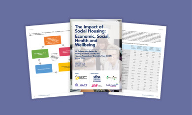 The Impact of Social Housing Research webinar event image