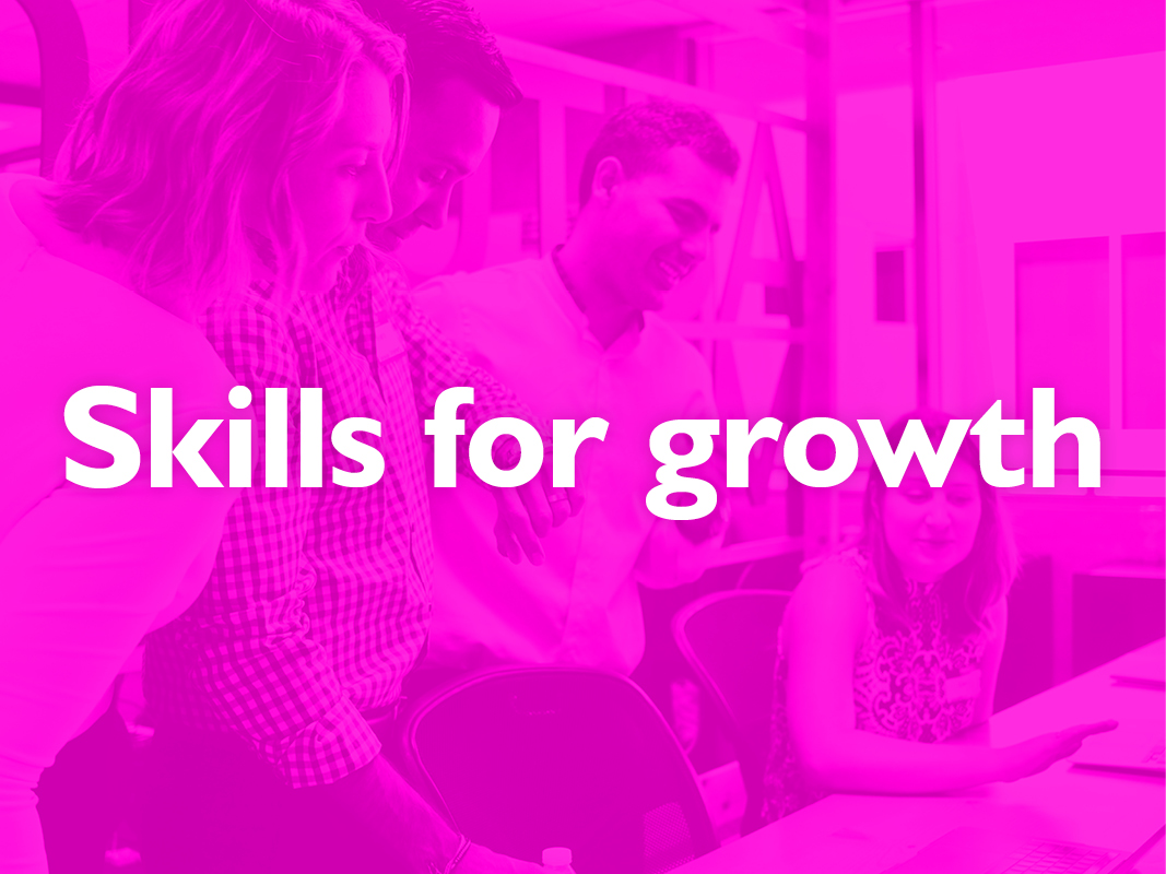 Skills for Growth Masterclass event image