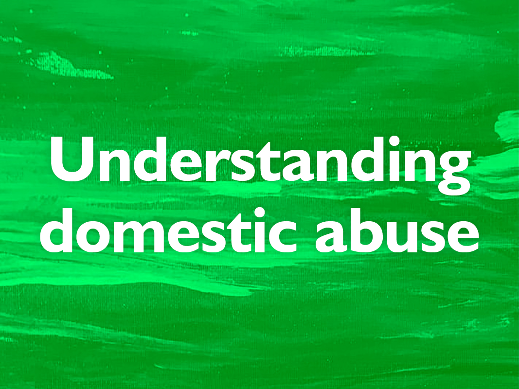 Taster: Domestic abuse in social housing image